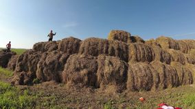 Kids play in a stack of straw. Kids play in a stack of straw stock footage