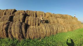 Kids play in a stack of straw. Kids play in a stack of straw stock video