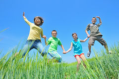 Kids play in wheat field Royalty Free Stock Photography