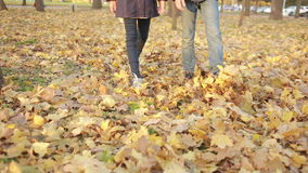 Kids playing in autumn park stock footage