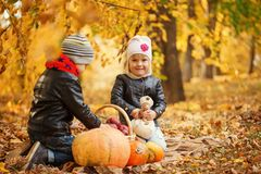 Kids playing in in autumn park with pumpkins and apple. Stock Image