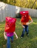 Kids Playing in Backyard. Royalty Free Stock Photos