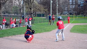 baseball kids playing in Boston Public Garden, USA, stock video