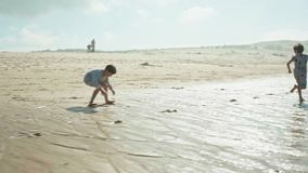 Kids Playing on the Beach stock video