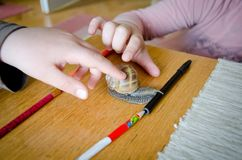 Kids playing with big snail Stock Photography