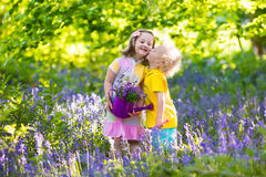 Kids playing in blooming garden with bluebell flowers Royalty Free Stock Photos