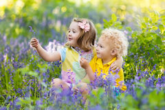 Kids playing in blooming garden with bluebell flowers Stock Photo