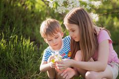 Kids are playing in blooming garden. royalty free stock photography