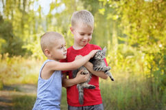 Kids playing with cat. Two little happy kids playing with cat in summer park Stock Image