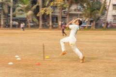 Kids playing Cricket Stock Image