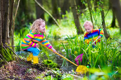 Kids playing with frog. Children playing outdoors. Two preschooler kids catching frog with colorful net. Little boy and girl fishing in a forest river in summer Royalty Free Stock Photography