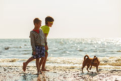 Kids playing with his dog. Royalty Free Stock Images