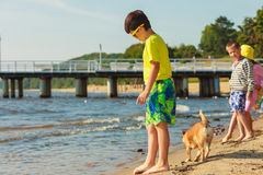 Kids playing with his dog. Stock Image