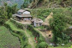Kids playing near Landruk, Nepal royalty free stock images