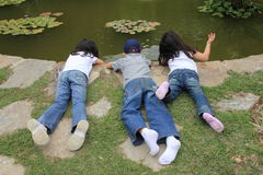 Kids playing near pond in a garden. A group of kids exploring the water in a pond in a gardenn stock image