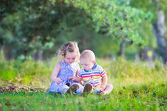 Kids playing with pine cones. Happy little children, adorable toddler giril in a blue dress and a cute baby boy, brother and sister, playing together with pine stock images