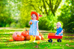 Kids playing at pumpkin patch Royalty Free Stock Photo