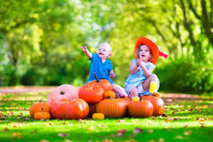 Kids playing at pumpkin patch Royalty Free Stock Image