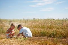 Kids playing on rural background Royalty Free Stock Images