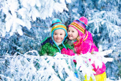 Kids playing in snowy forest. Children play in snowy forest. Toddler kids outdoors in winter. Friends playing in snow. Christmas vacation for family with young Stock Images