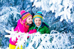 Kids playing in snowy forest Stock Images