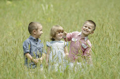 Kids playing in a summer field Royalty Free Stock Photo