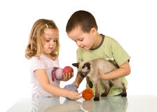 Kids playing with their cat stock image