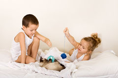 Kids playing with their kitten Stock Image