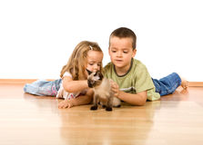 Kids playing with their new kitten Stock Image