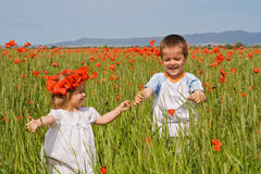 Kids on poppy field. In summer time - slight motion blur on the boy Royalty Free Stock Image