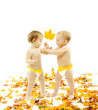 Autumn Baby Kids, Yellow Leaf Gift, Children Present on White stock image
