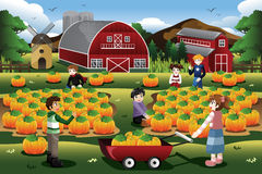 Kids on a Pumpkin Patch Trip in Autumn or Fall Season Stock Image