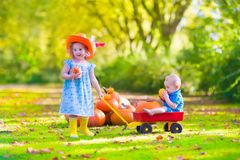 Kids at pumpkin patch. Two happy children at pumpkin patch during Halloween, cute curly little girl in a cowboy hat pushing a wheel barrow with a funny baby boy Stock Images