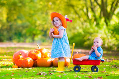 Kids at pumpkin patch Stock Images
