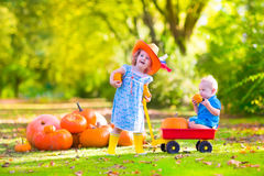 Kids at pumpkin patch. Two happy children at pumpkin patch during Halloween, cute curly little girl in a cowboy hat pushing a wheel barrow with a funny baby boy Royalty Free Stock Photography