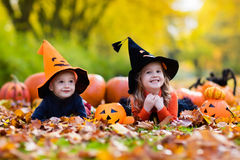 Kids with pumpkins on Halloween Royalty Free Stock Photos