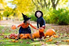 Kids with pumpkins in Halloween costumes stock photo