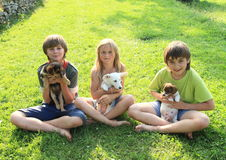 Kids with puppies. Kids - two little boys and girl playing with dogs - puppies stock images