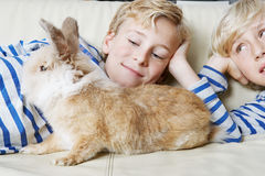 Kids with rabbit at home. Stock Photos