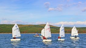 Sailing boats cadets racing. Kids racing in class Optimist sailboats regatta on Iskar Lake,Sofia Bulgaria. Picture taken on October 14th 2017 Royalty Free Stock Photo