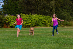 Kids racing a dog. Two girls running with a golden retriever dog Royalty Free Stock Photography