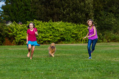 Kids racing a dog. Two young girls running fast with a golden retriever dog Stock Images