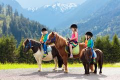 Kids riding pony. Child on horse in Alps mountains stock image