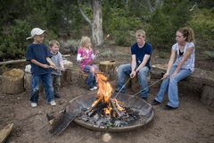 Kids roasting hotdogs. Kids using a fire in the outdoors to roast their hot dogs that are on roasting sticks Royalty Free Stock Photos
