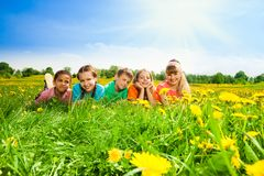 Kids in a row in flower field Stock Image
