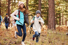 Kids run ahead of family hiking in forest, California, USA stock photos