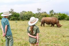 Kids on safari. Back view of kids on safari walking close to white rhino royalty free stock photography