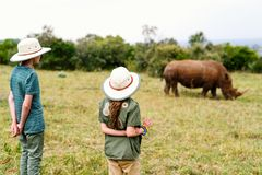 Kids on safari. Back view of kids on safari walking close to  white rhino Stock Photo