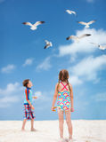 Kids and seabirds Royalty Free Stock Image