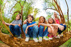 Kids sitting on trunk of fallen tree in the forest Stock Photography